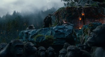 Dawn of the Planet of the Apes download torrent