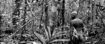Embrace of the Serpent download torrent